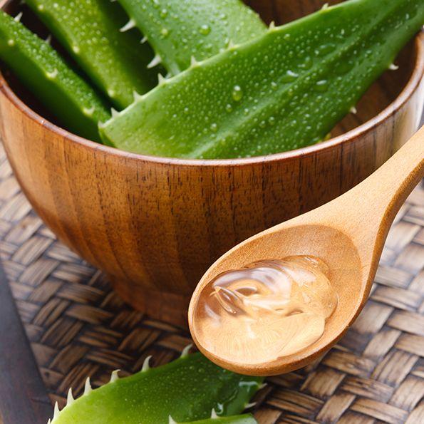 Aloe vera pour les vergetures : Gel d'aloe vera